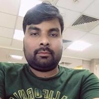 Dinesh Singh, Droplet freelance coder