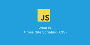 What is Cross Site Scripting (XSS)