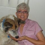 Donna D. - Seeking Work in Rio Verde