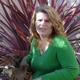 Kellie D. - Seeking Work in Novato