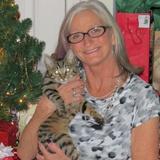 Diane B. - Seeking Work in Benton