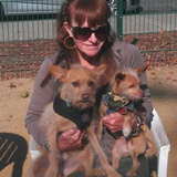 Theresa F. - Seeking Work in San Jose