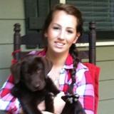 Katie S. - Seeking Work in Hayesville