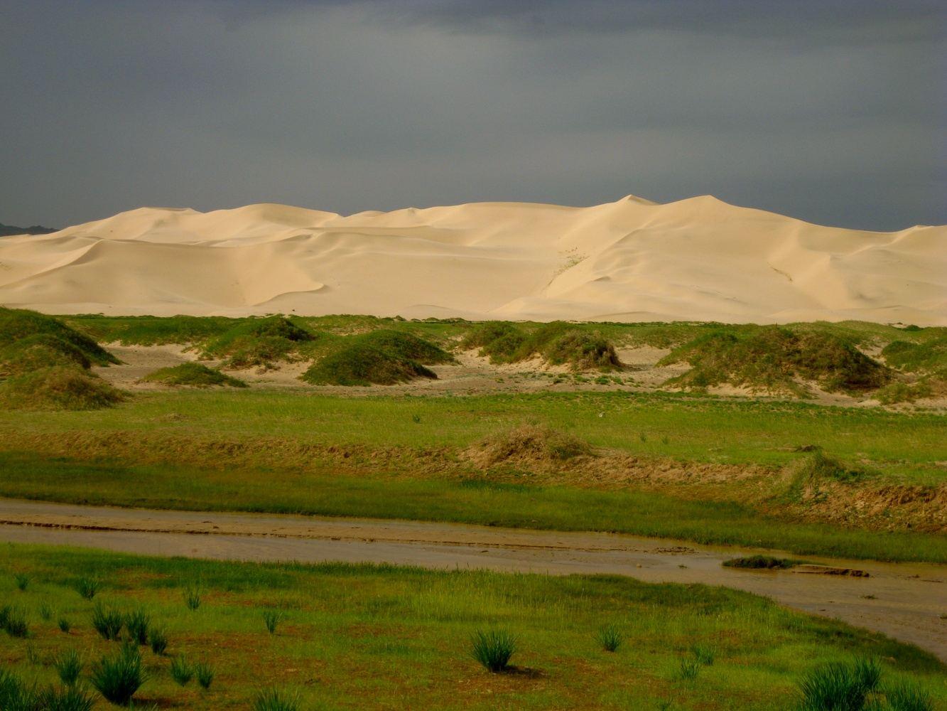 Beauty of Gobi