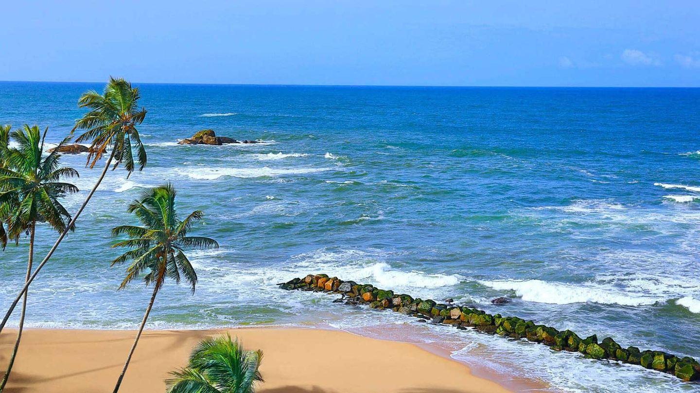 Beach & Safari Sri Lanka