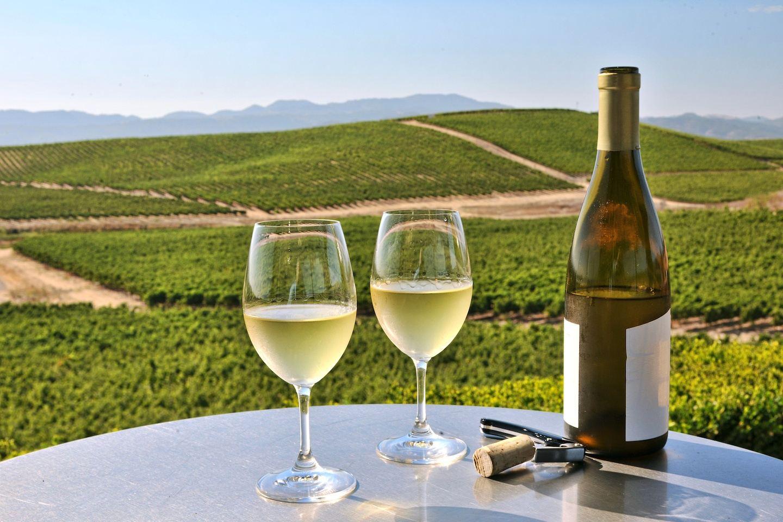California Wine Tasting: Napa Valley