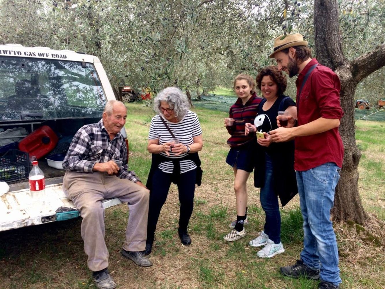 Olive Harvest Experience in Abruzzo - Olive picking in Italy