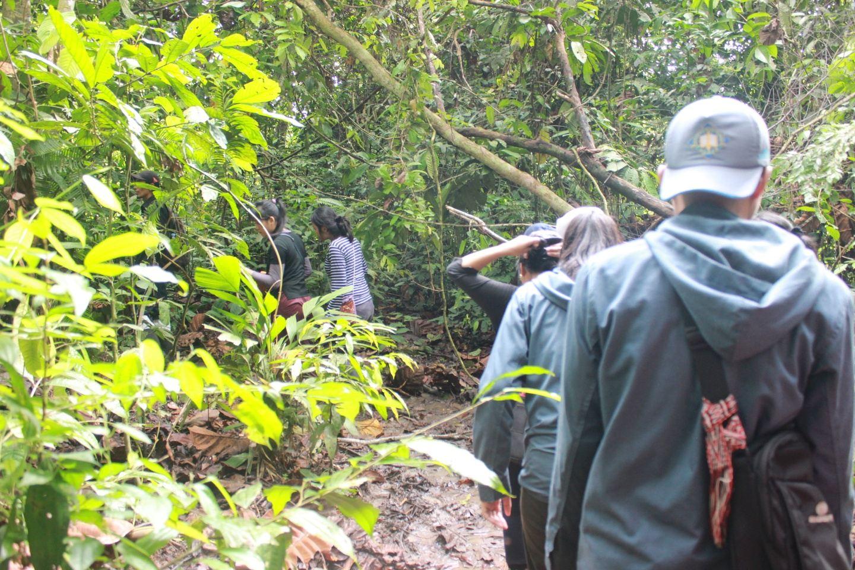 Discover Bukit Lawang