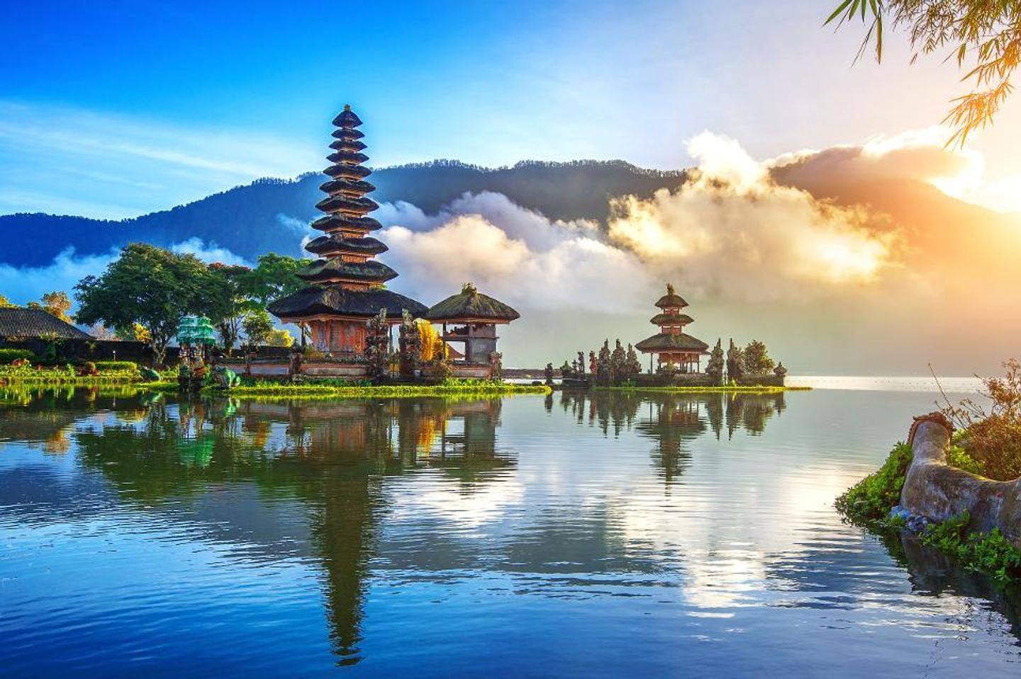 The bali times, be part of it