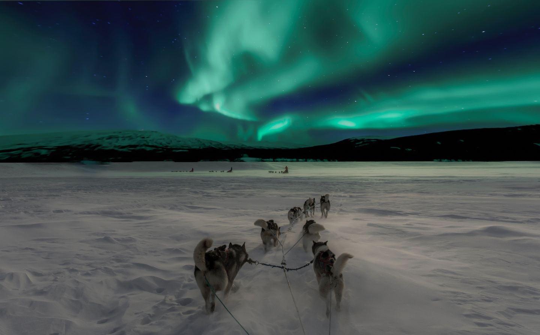 White & Wild | Northern Lights and Santa Claus of Rovaniemi, Finland