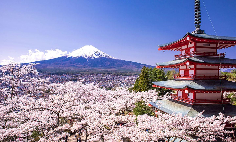 HBS Japan Trek 2019 v2