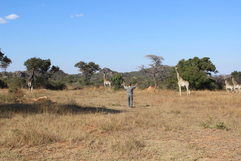 Wildlife and Nature Sanctuary Adventure