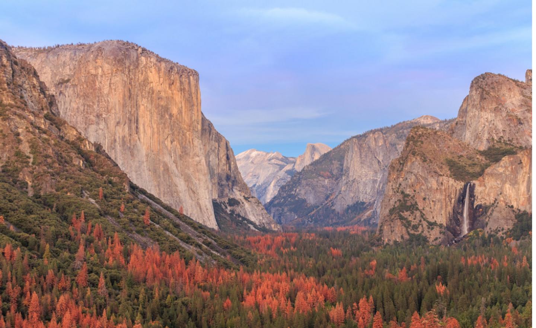 Yosemite Spa and Yoga Retreat