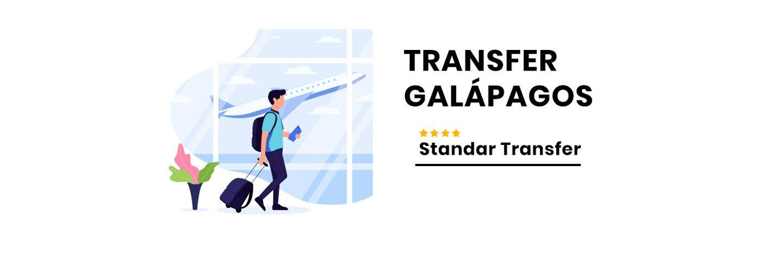 Standard Transfer, 4 people