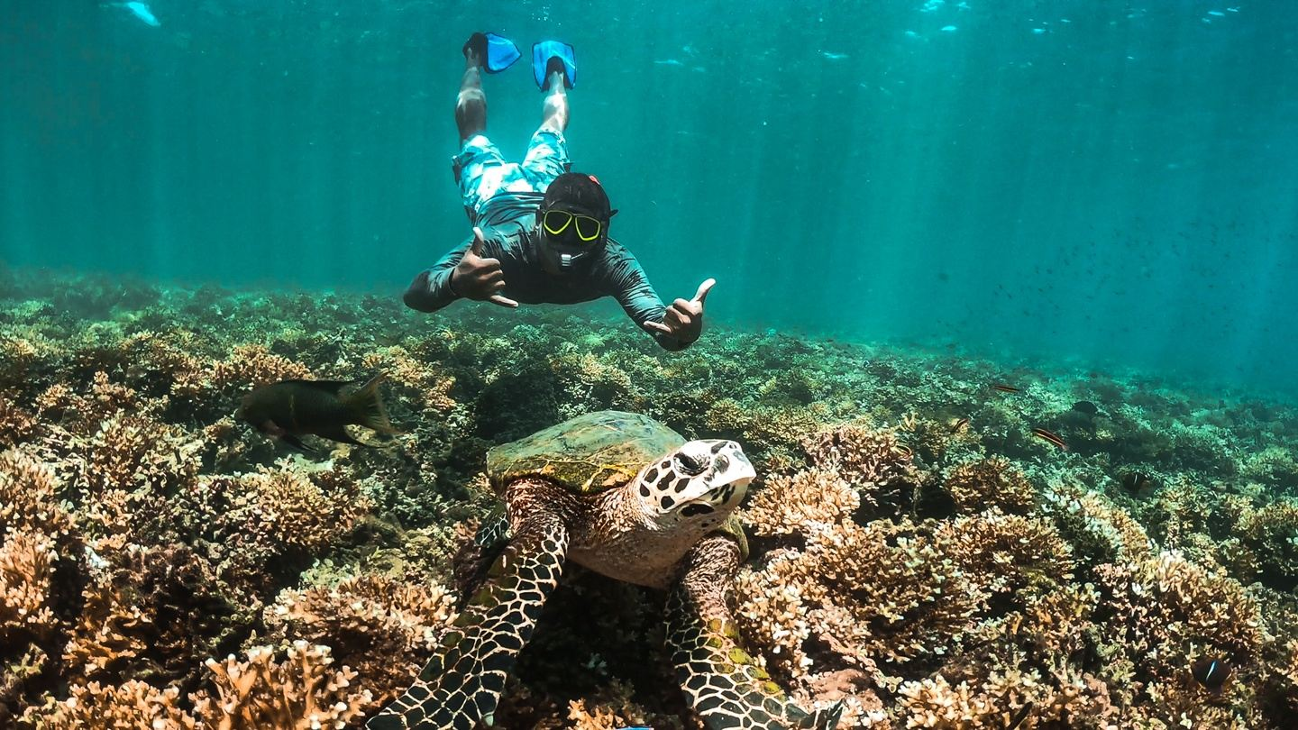 The Best Snorkeling Tour in Coiba National Park