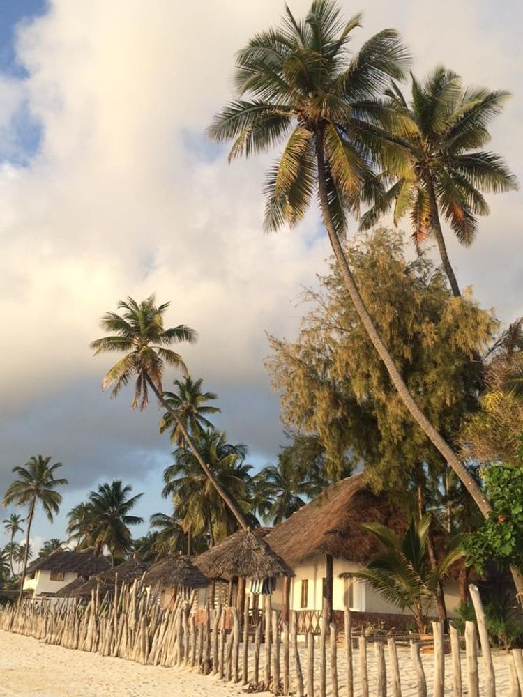 Island Retreat Experience - A Yoga, KIte, Dive Wellness Adventure