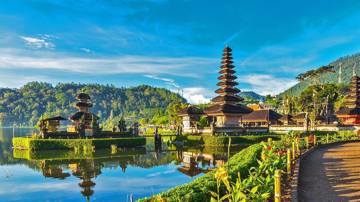 Vegan Apprenticeship The Real Magic of Ubud Bali 6 days