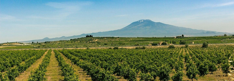 Eastern Sicily Gourmet & Culture Tour 2018
