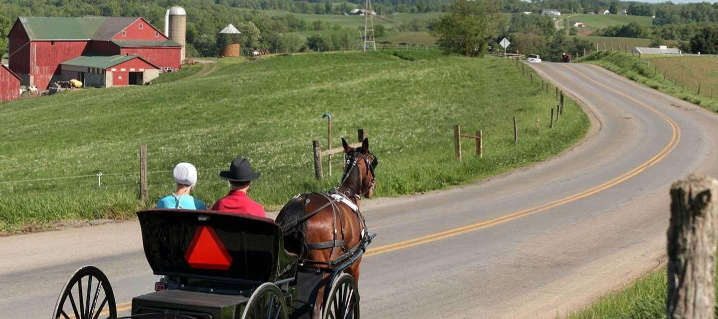 Amish Immersion ~ Ohio Summer of Fun Series