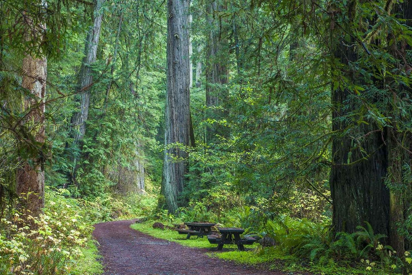 Spirit Hike: A Day Retreat Into Wilderness & Within