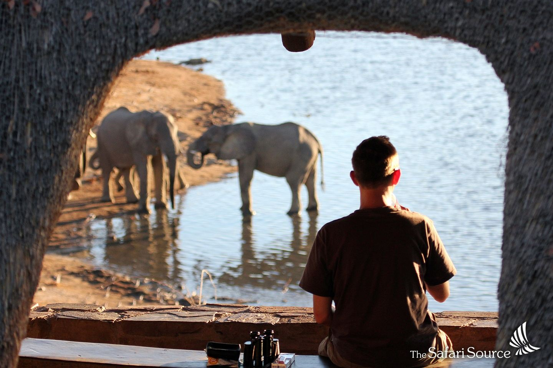 Zimbabwe Safari Highlights - 9 days