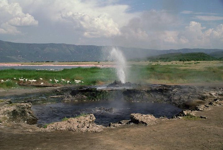 7 DAYS TANZANIA GREAT MIGRATION SAFARI IN NORTHERN SERENGETI
