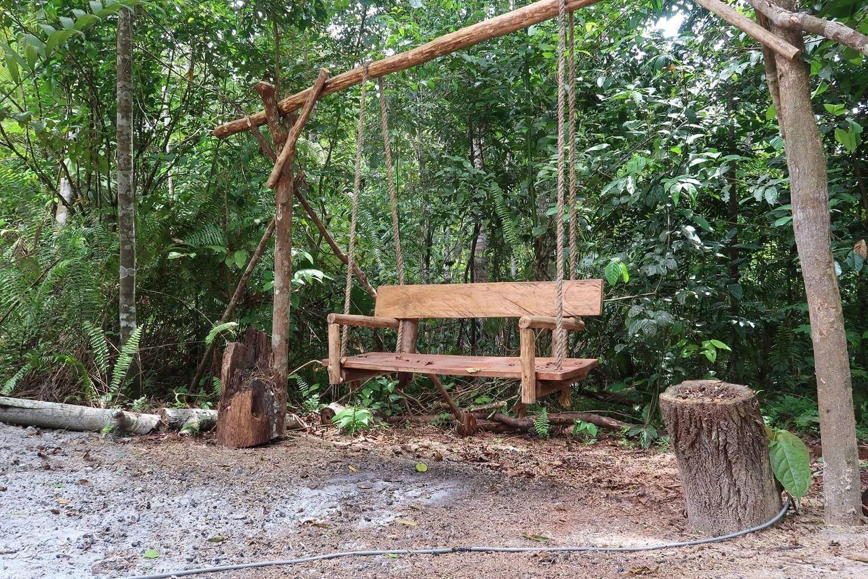 Yoga, meditation,  ayahuasca retreat in the Amazon rainforest