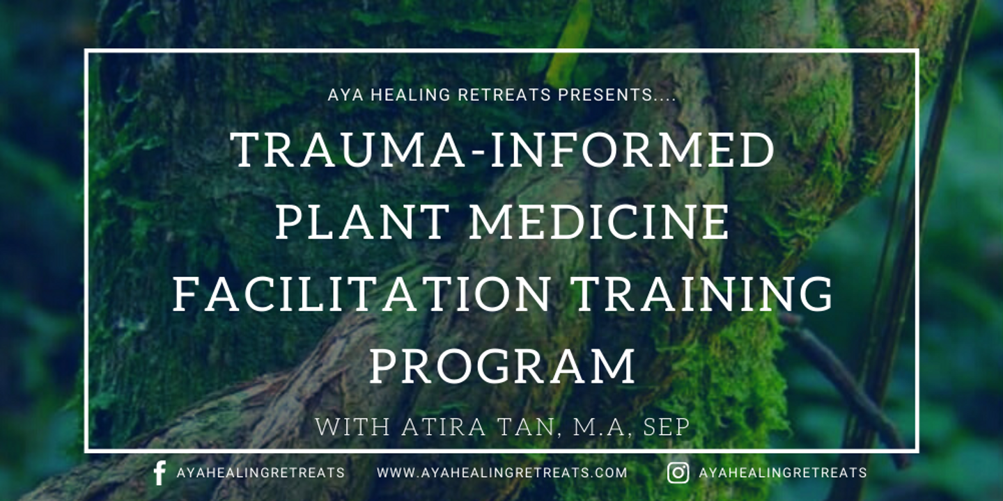 Trauma-Informed Plant Medicine Facilitation Training Program