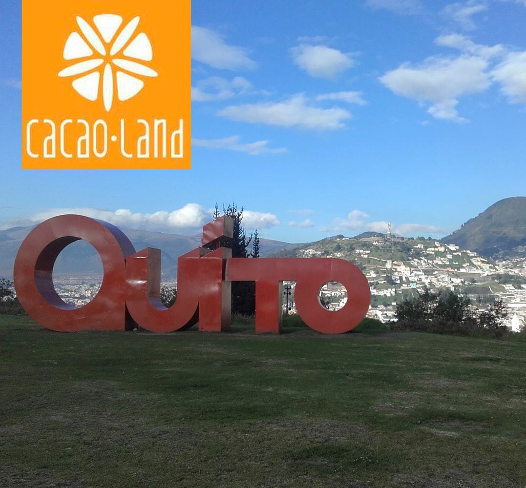 Day Trip Quito Old Town and Equator Line