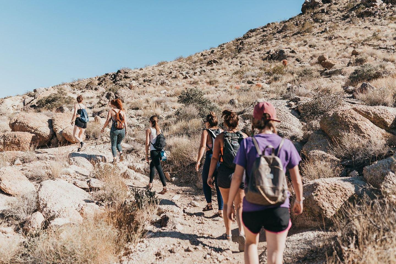 The Wild Leader Pathway Training
