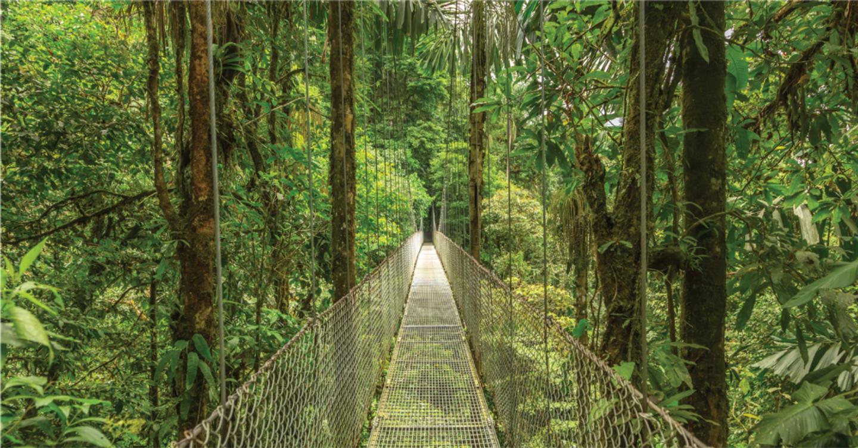 ¡Viaja con ELLA a Costa Rica!