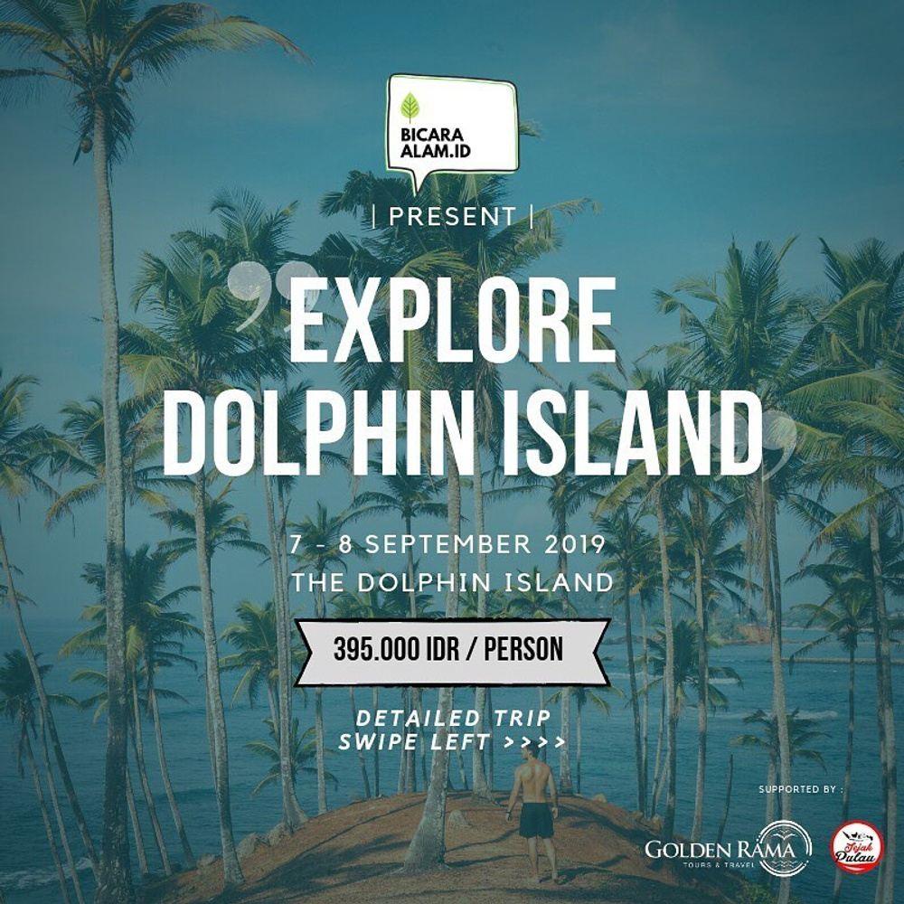 Explore The Dolphin Island | 7-8 September