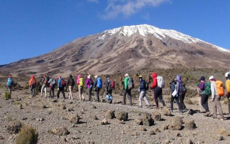 14- Days Kilimanjaro Machame route & safari