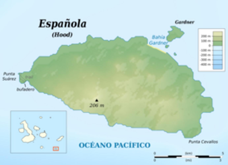 ISLA ESPAÑOLA: PUNTA SUAREZ, ISLOTE GARDNER