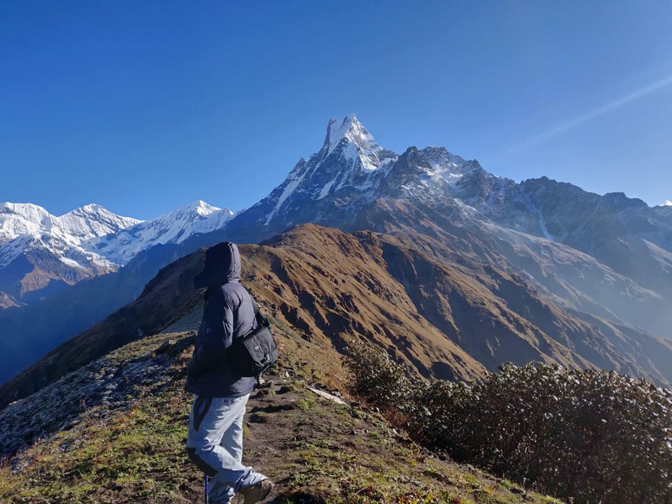 Mardi Himal Trek - 7 Days
