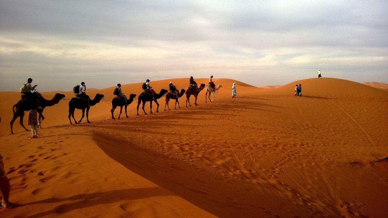 Sojo Morocco