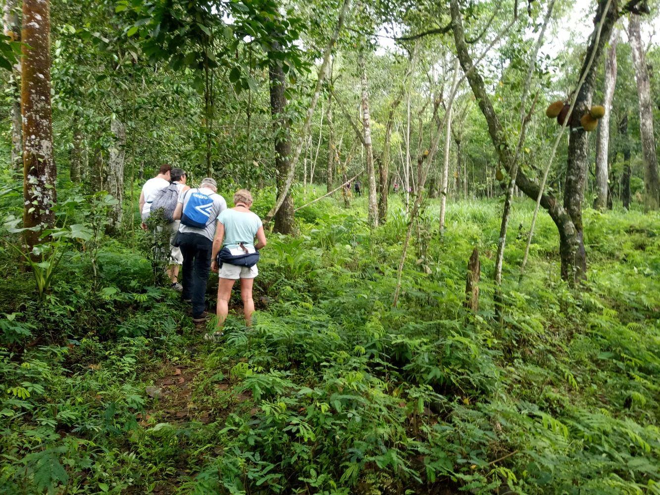 Ullen Sentalu & Merapi Trekking