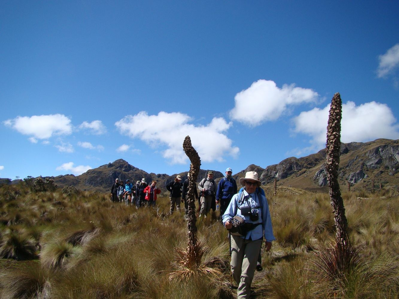 Cajas National  Park Full day