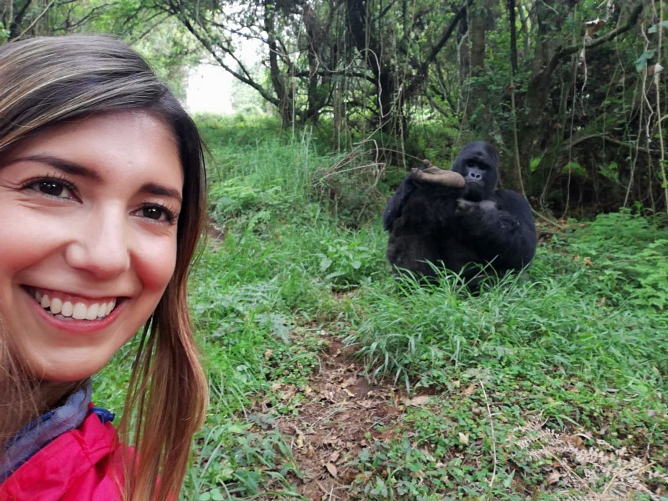 2 days gorilla trekking in Uganda