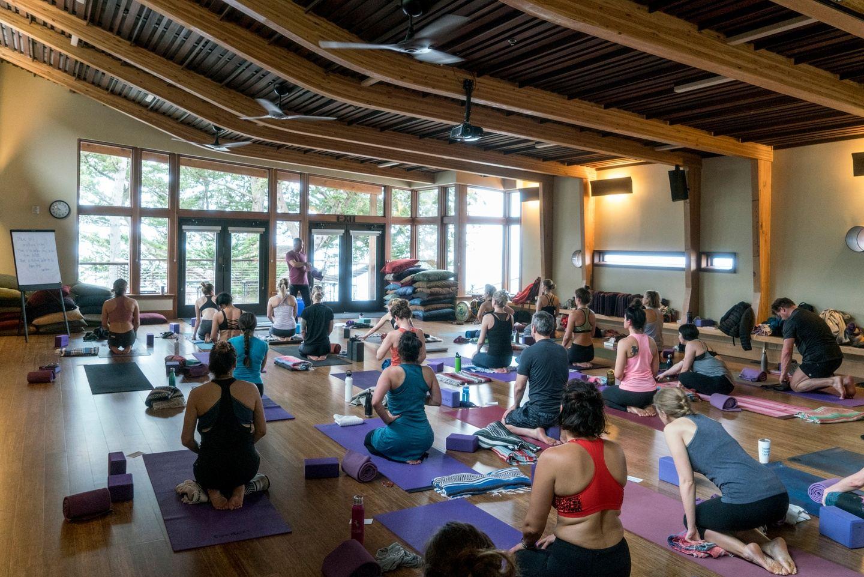 Thanksgiving Day Yoga w/ Pete G Yoga