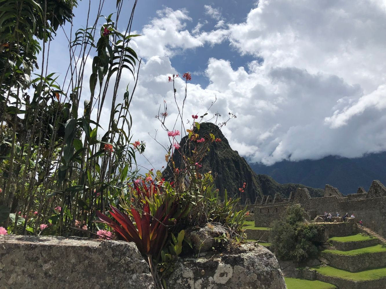Machu Picchu Quick Trip