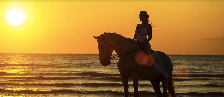 Costa Rica Horseback Riding Retreat (April 2020)