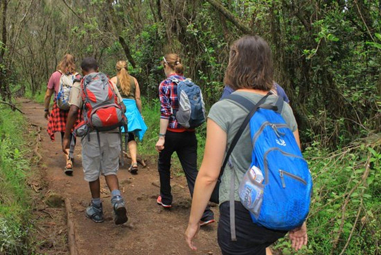 Kilimanjaro Marangu Day Trip