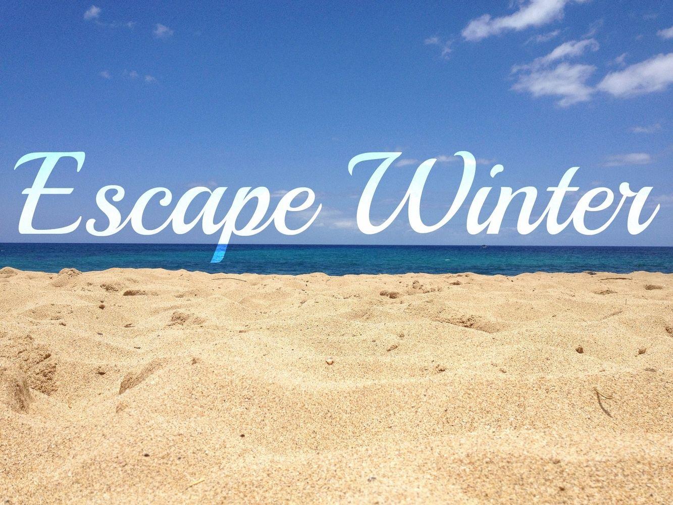 Winter Escape to Cabo San Lucas