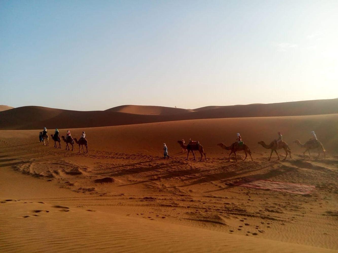 Yoga & Ayurveda meets Desert-Trip!