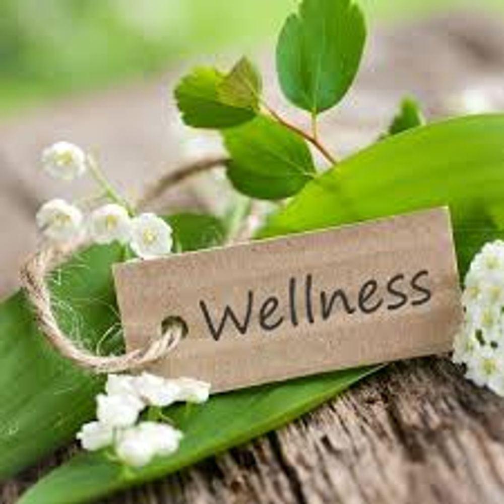 Everyday Wellness Workshop