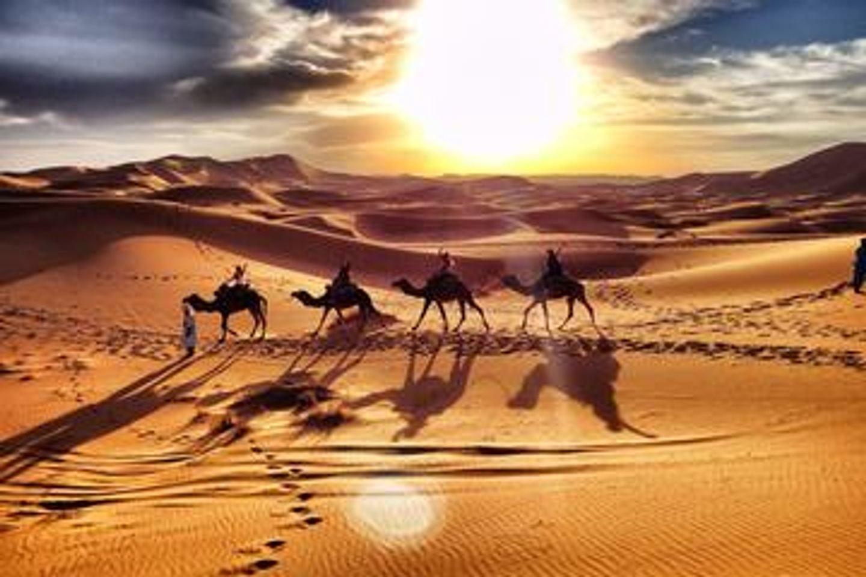 Sahara and the Desert