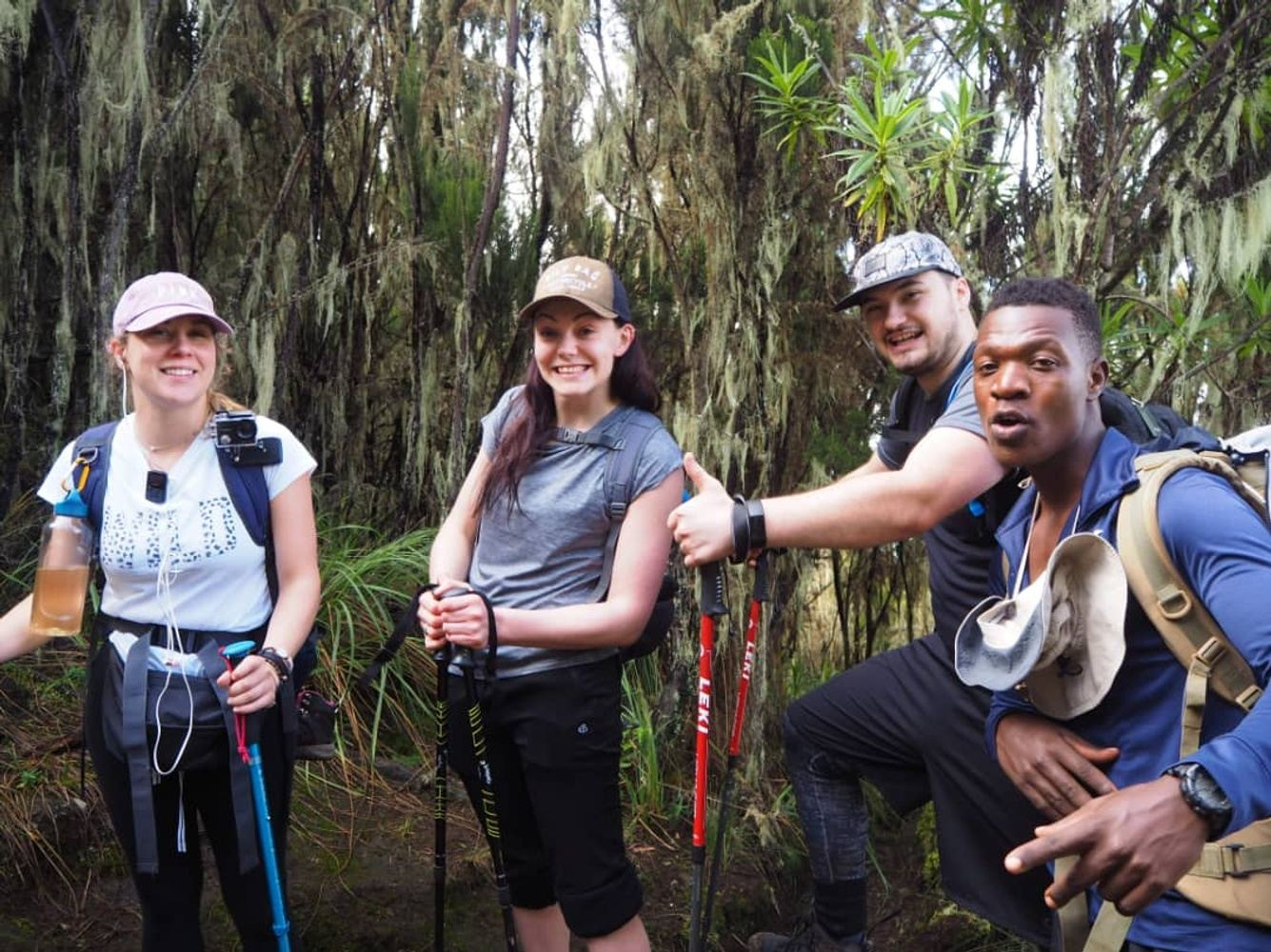 Kilimanjaro Hiking Via Lemosho Route