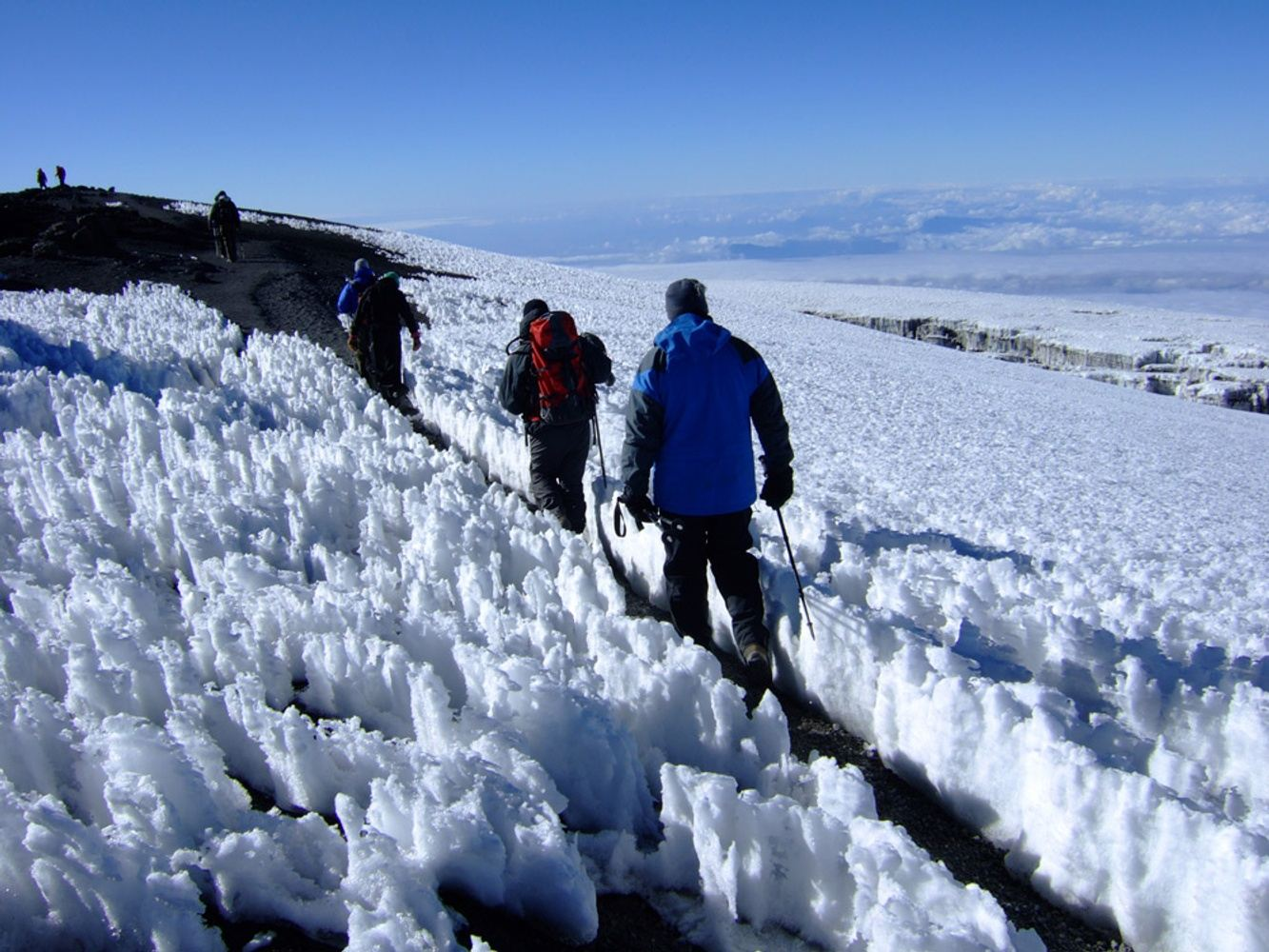 Epic Mt.Kilimanjaro Climbing Via Coca-Cola Route