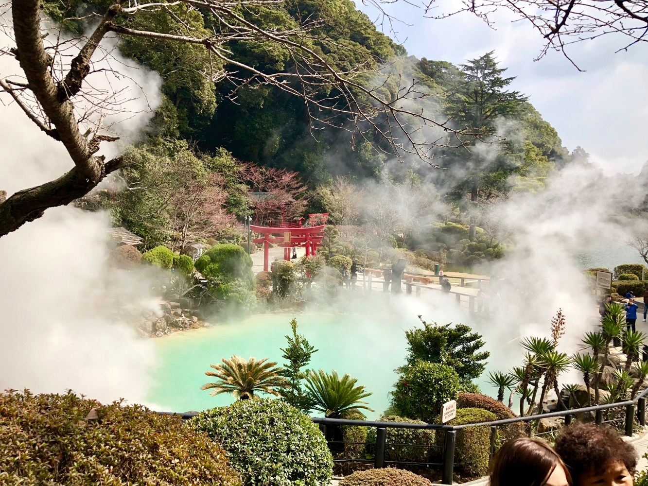 Japan trip for fun